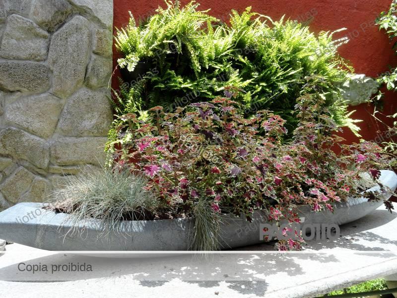 decoracao jardim pedras:Pagliotto – Decoração para Jardim